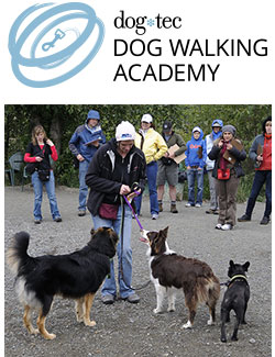 dog-tec Dog Walking Academy