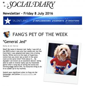 Social Diary 8 July 2016