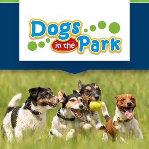 Petcationz Dogs in the Park various Venues NSW