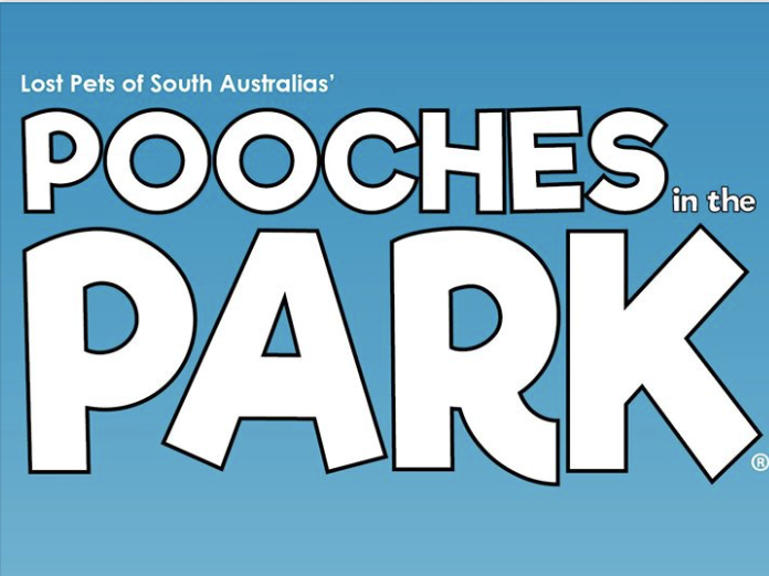 Petcationz Pooches in the Park Torrensville South Australia April 2020