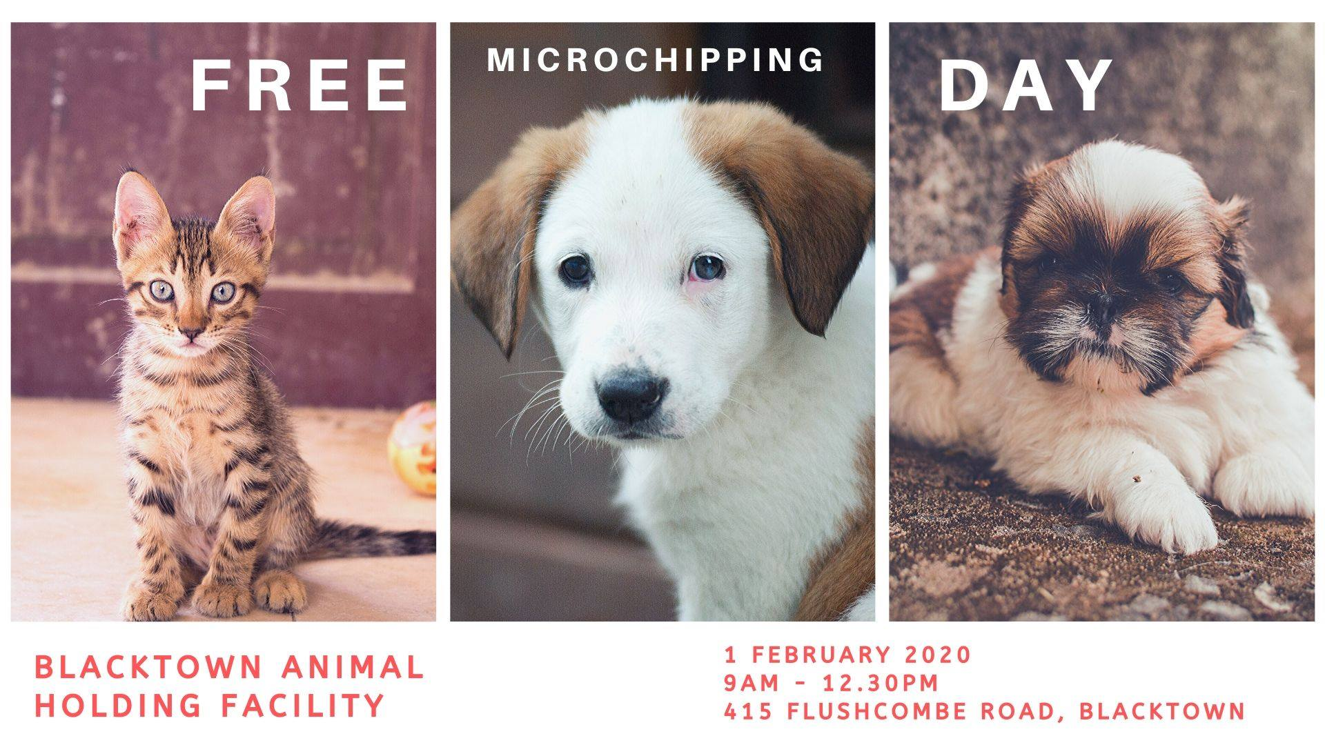 Petcationz Free Microchipping Day Blacktown NSW Australia