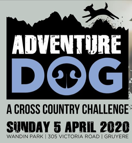 Petcationz Adventure Dog a cross country challenge april 2020