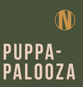 Petcationz Puppa Palooza Newmarket Hotel St Kilda Melbourne Victoria 23 February 2020
